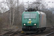 P1010322